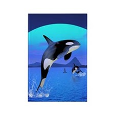 orca_84_curtains_835_H_F Rectangle Magnet