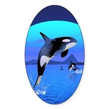 orca_84_curtains_835_H_F Decal