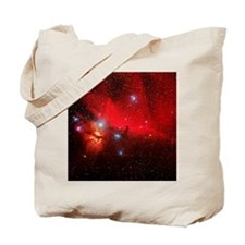 Horsehead and Flame nebulae Tote Bag