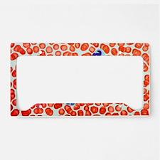 Human blood cells, light micr License Plate Holder