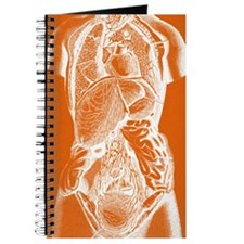 Human body anatomy Journal