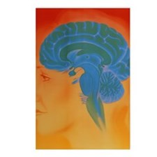 Human brain Postcards (Package of 8)