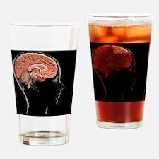 Human brain, model Drinking Glass