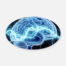 Human brain, conceptual artwork Oval Car Magnet
