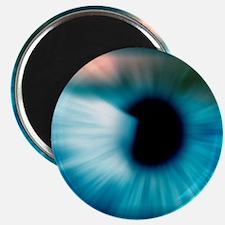 Human eye Magnet