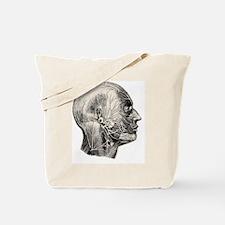 Human facial muscles Tote Bag