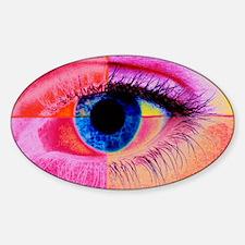 Human eye Sticker (Oval)