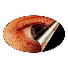 Human eye Decal