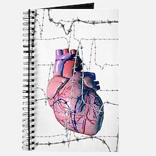 Human heart Journal