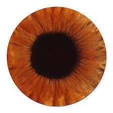 Human iris Round Car Magnet