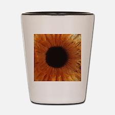 Human iris Shot Glass
