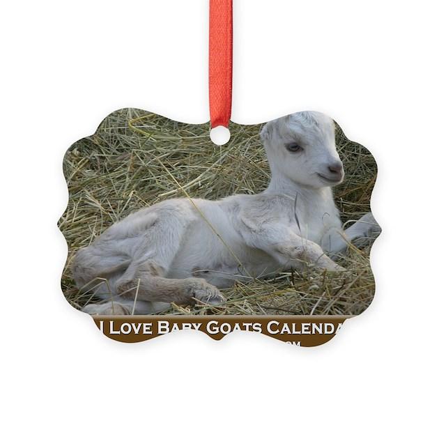 I Love Baby Goats Calendar Ornament by Admin CP