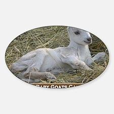 I Love Baby Goats Calendar Sticker (Oval)