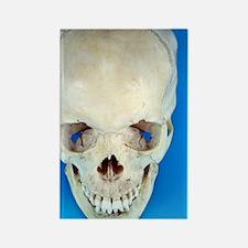 Human skull Rectangle Magnet