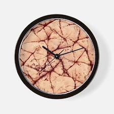 Human skin surface, SEM Wall Clock