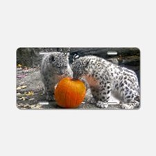 Snow Leopards and Pumpkin Aluminum License Plate