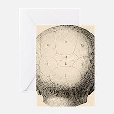 Human skull Greeting Card