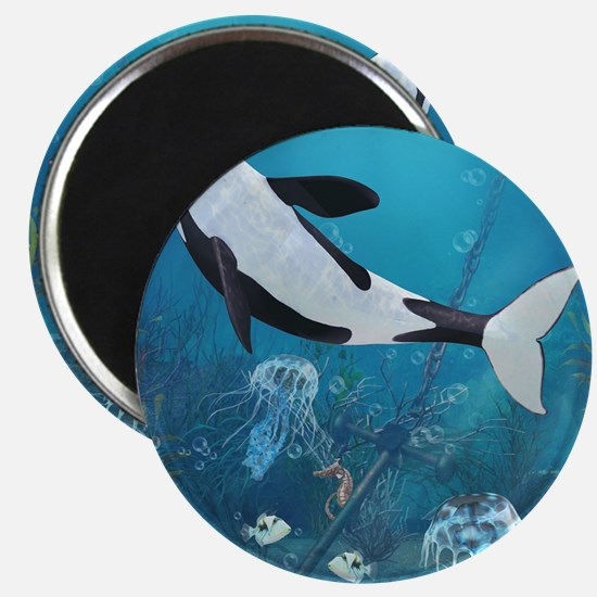 orca2_60_curtains_834_H_F Magnet