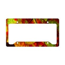 FallVineLeaf14x6 License Plate Holder
