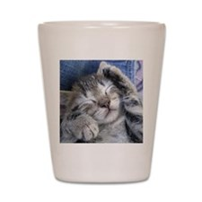 Sleeping Kitten Shot Glass