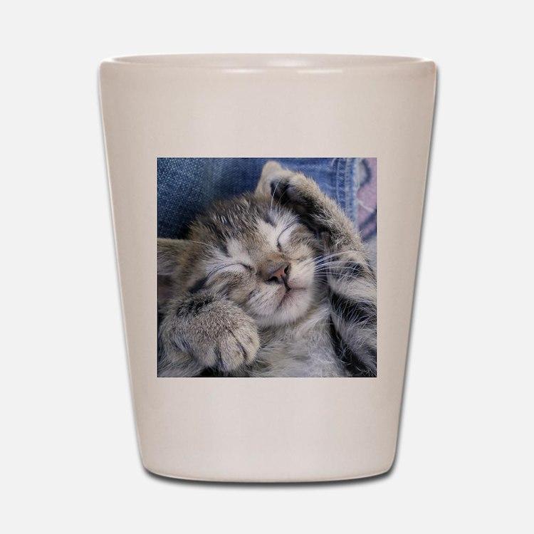 Sleeping Kitten Shot Glass