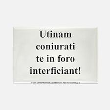 Latin Phrase Rectangle Magnet