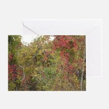 fall day Greeting Card