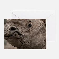 (18) Rhino 8856 Greeting Card