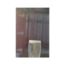 Fluted glass and Adirondack chair Rectangle Magnet
