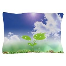 Young leaves under blue sky Pillow Case