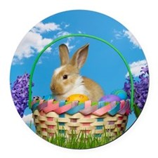 Easter bunny in a basket in the g Round Car Magnet