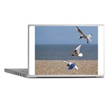 Three tiers of seagulls on beach, Ald Laptop Skins