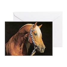 Arabian Barb Greeting Cards (Pk of 10)