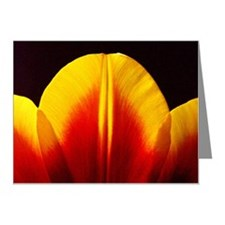 Tulip Note Cards (Pk of 10)