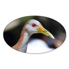 Grey necked wood rail with bright r Decal