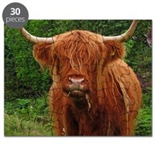 Profile of long haired highland cow. Puzzle