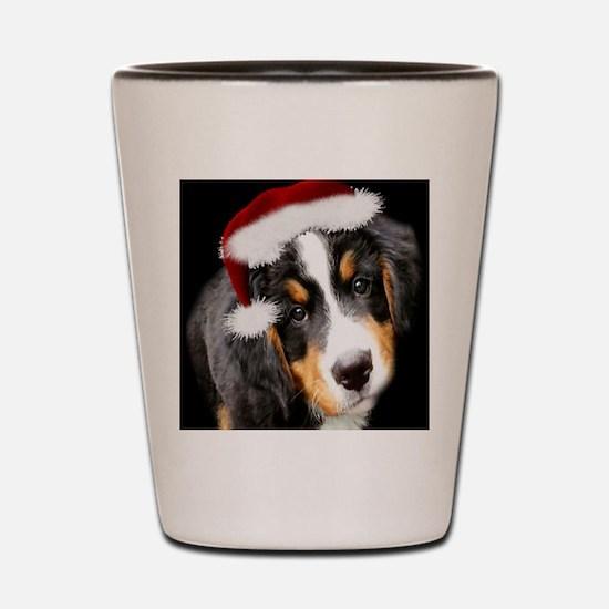 bernese mountain dog puppy Shot Glass