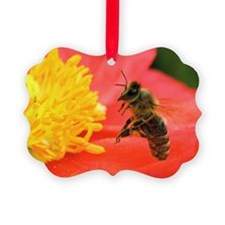 A honey bee hovers beside the bri Ornament