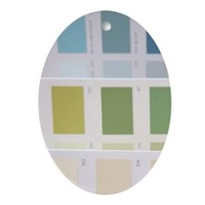 Colour paint sample swatches Oval Ornament