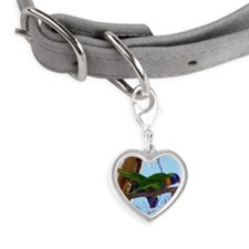 Showing off for the camera!Pho Small Heart Pet Tag