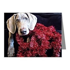 Red Tinsel Weimaraner Note Cards (Pk of 10)