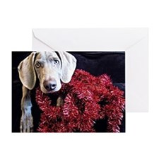 Red Tinsel Weimaraner Greeting Card