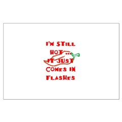 Hot Flash Posters
