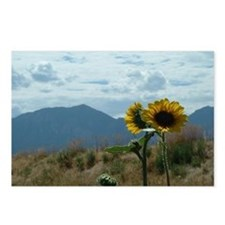 Sunflower & Mountains Postcards (Package of 8)