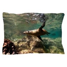 Islands of Los Islotes Sea of Cortez Pillow Case