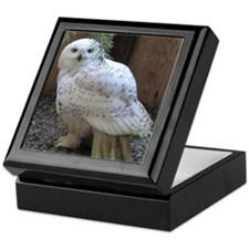 Snowy Owl Full Keepsake Box
