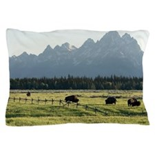 Bison grazing Pillow Case
