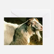 A chimera, a mixture of goat and she Greeting Card