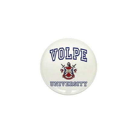 VOLPE University Mini Button