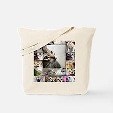 Singapura Cats Tote Bag